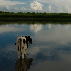 Read more at: Hulun Lake